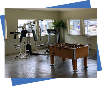 Family Games and Exercise Equipment